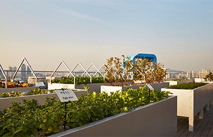 현대카드·현대캐피탈 본사 1관 옥상에 위치한 '더 가든'