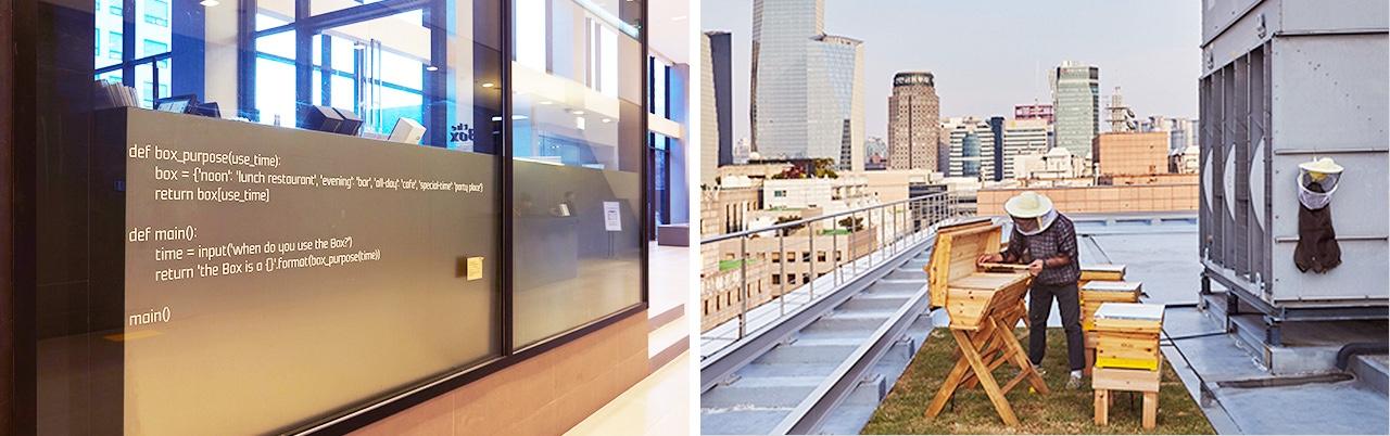 벽에 코딩 언어가 적혀있는 사내 식당 the Box (왼쪽)과 작년 5월 현대카드·현대캐피탈 옥상에 설치되었던 벌통 (오른쪽)